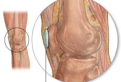 knee-bursae