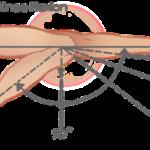 range of motion of knee