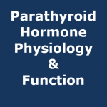 parathyroid hormone physiology
