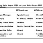 Difference between upper an dlower motor neuron lesions