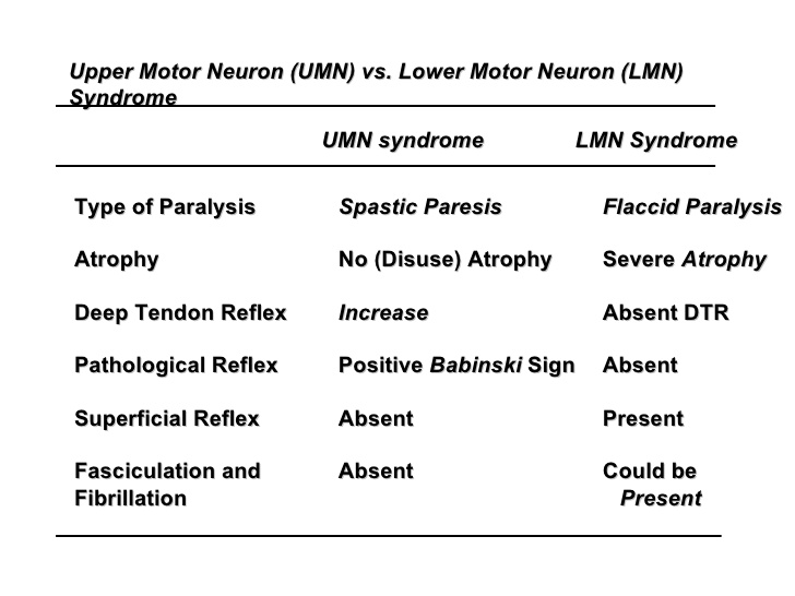 Upper motor neuron and lower motor neuron syndromes bone What is lower motor neuron disease
