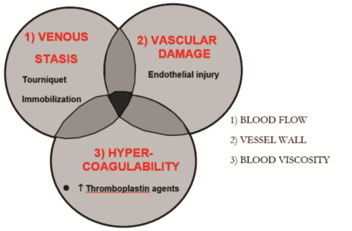 thromboprophylaxis