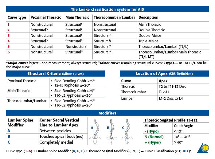 Lenke classification system for scoliosis